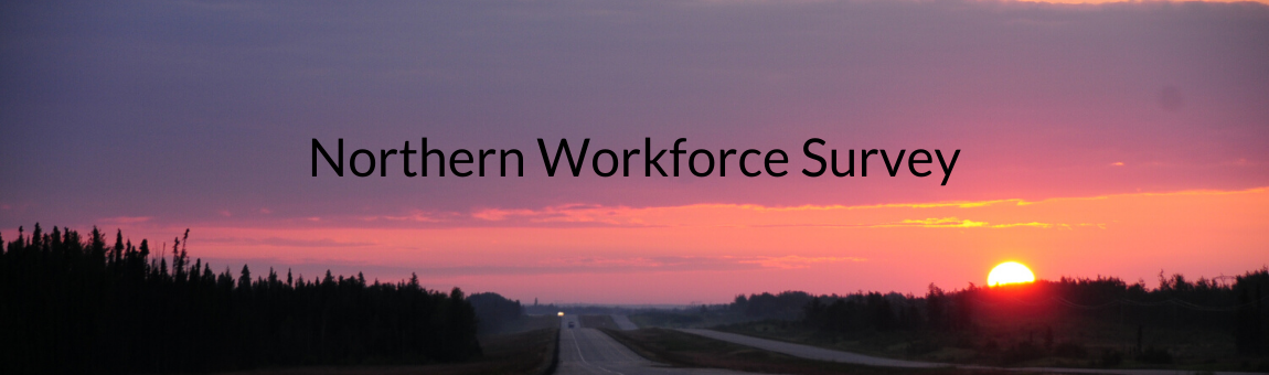 2020 Northern Workforce Survey